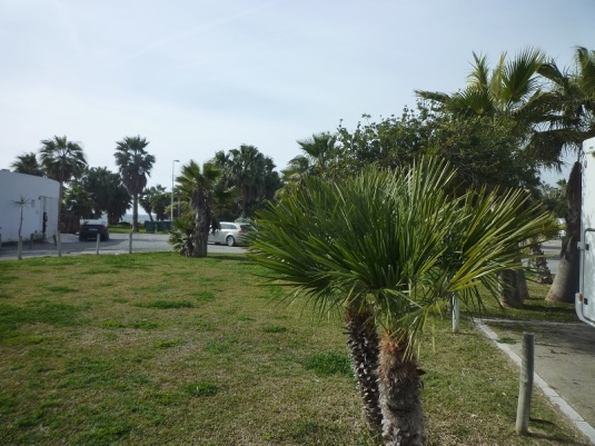 platz-in-motril-1